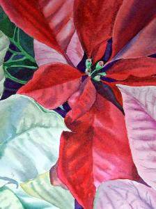 Poinsettia Dress - Christmas Carnival