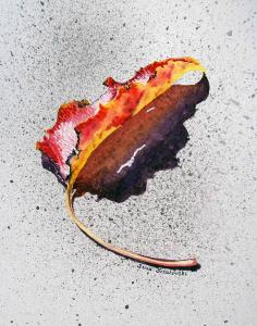 Leaf On Fire